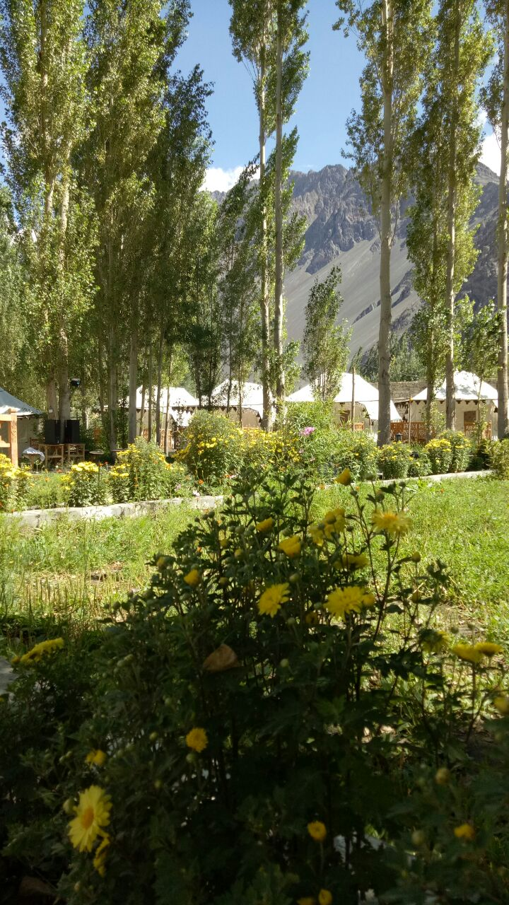 Nubra Ethnic Camp In Nubra