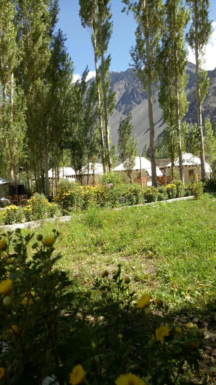 Nubra Ethnic Camp In Hunder