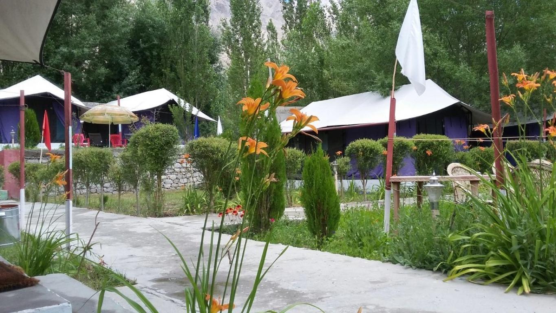 Valley Flower Camp in Nubra