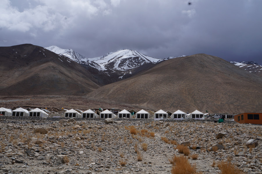 Ladakh Summer Pangong Camp