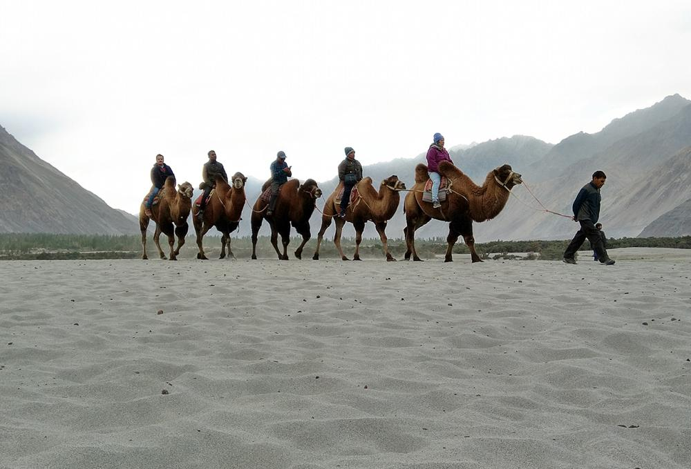 Leh Ladakh 12 Nights and 13 Days Tour Package