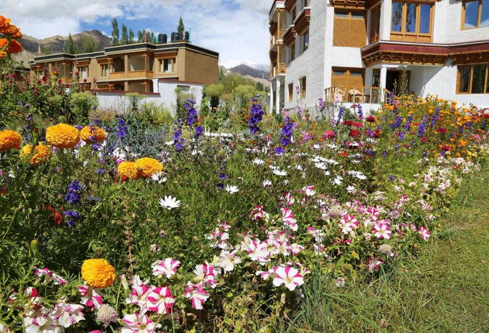 Ladakh Himalayan Retreat