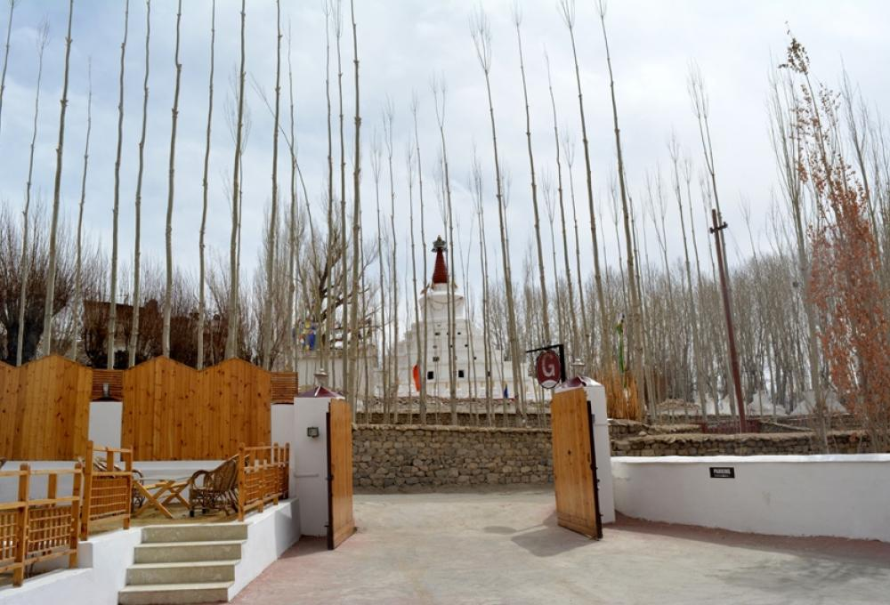 Hotel Gomang Boutique in Leh