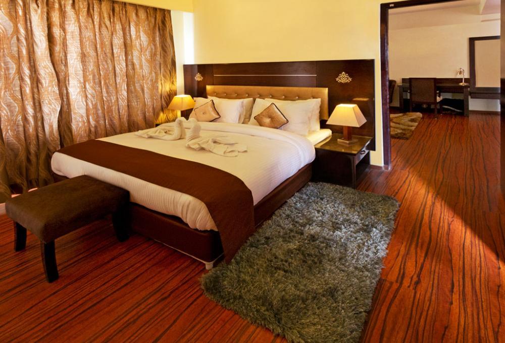Singge Palace Hotel In Leh