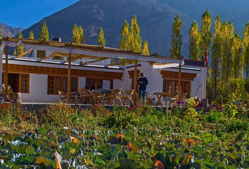 Nubra Ecolodge In Nubra