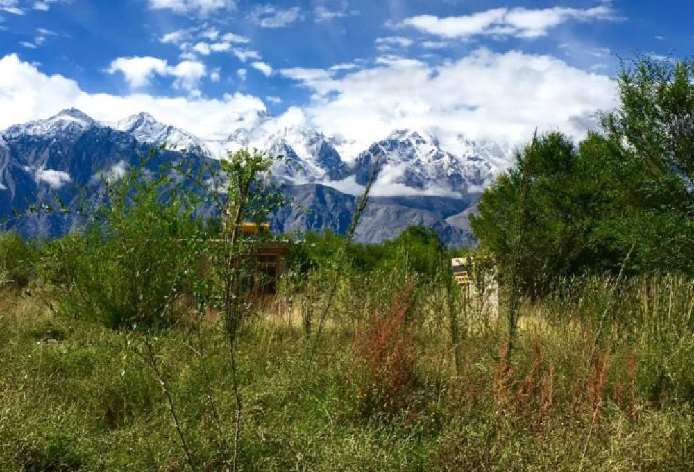 Lchang Nang Retreat In Nubra Valley