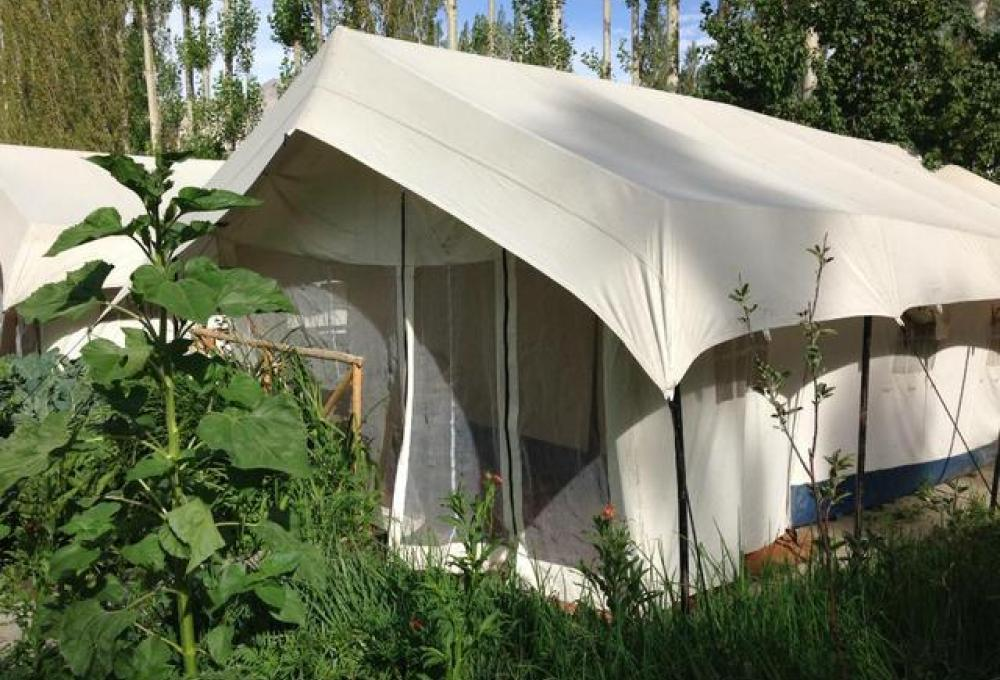 Mystique Meadows Swiss Cottage Camp