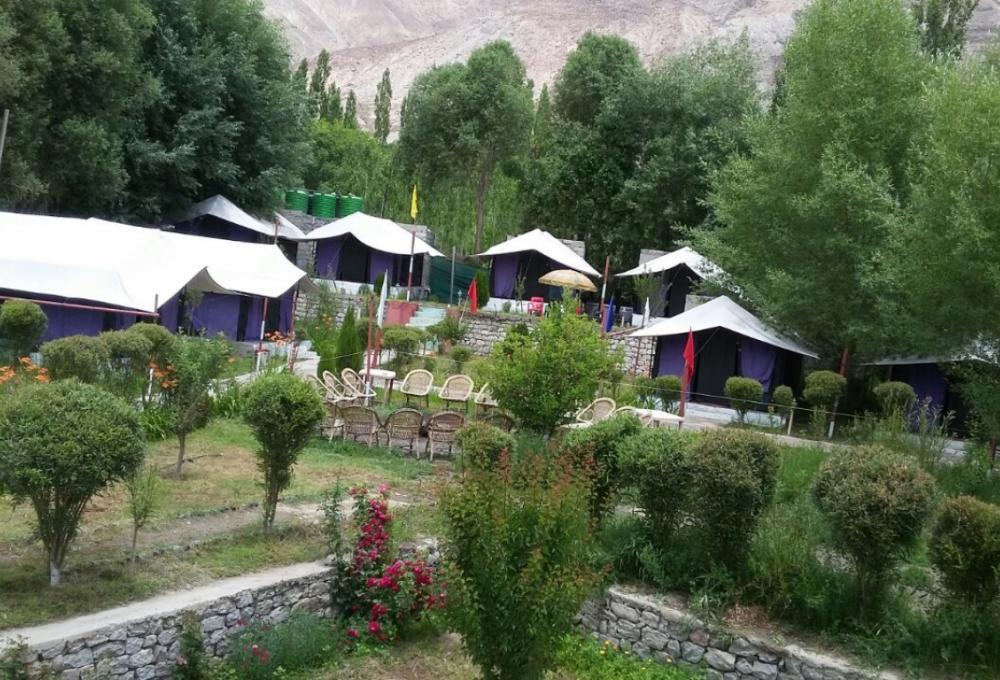 Valley Flower Camp