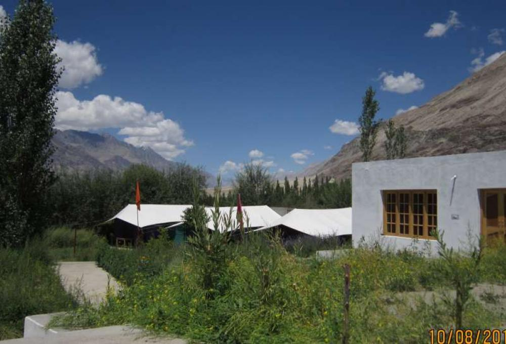 Tiger Camp Nubra