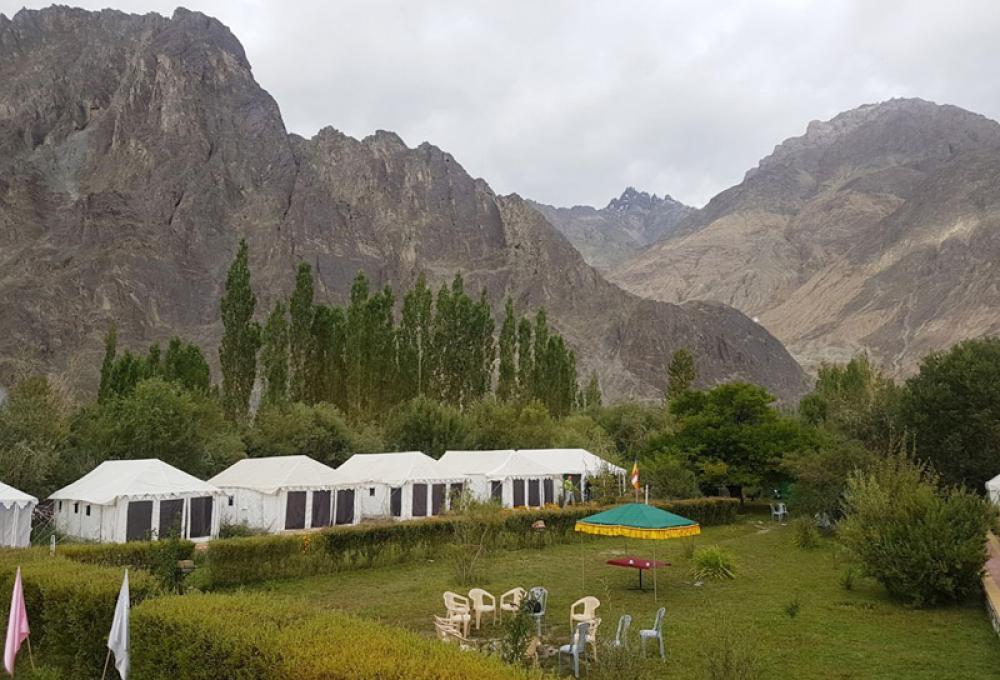 Ladakh Summer Camp In Nubra