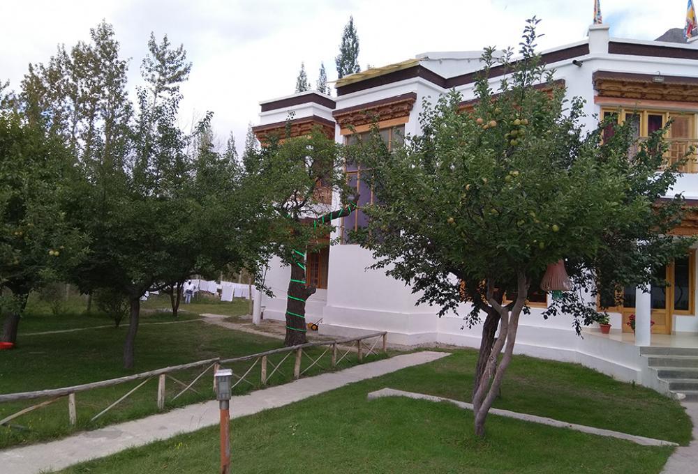 Hotel Snow Leopard