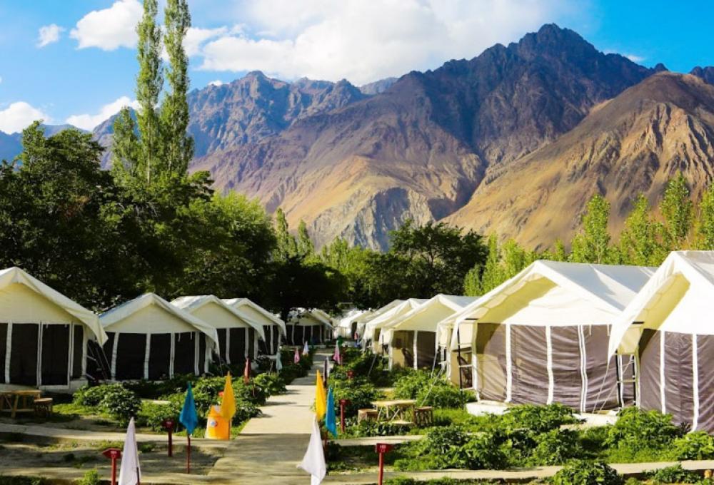 Regal Camp Nubra