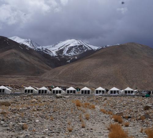 Ladakh Summer Pangong Camp