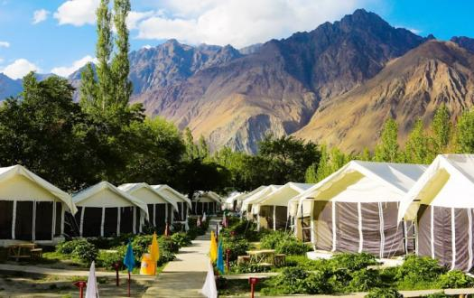 Regal Camp Nubra