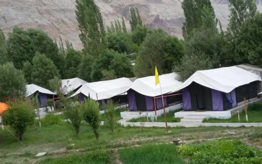 Valley Flower Camp
